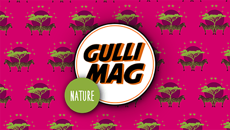 gullinature